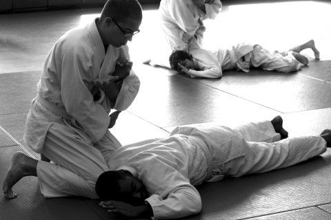 aikido-ude osae principiantes